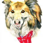 Custom drawn dog portraits and animal portraits
