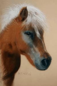Horse Pastel Portrait, PetsPortraits4u