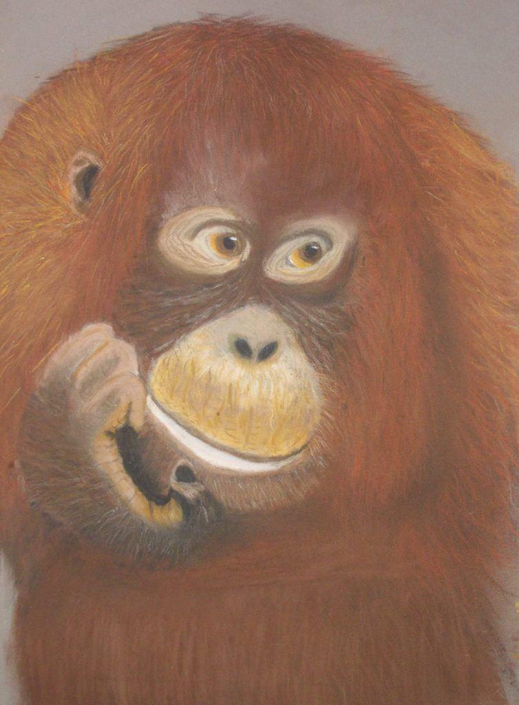 Orangutan drawing painting