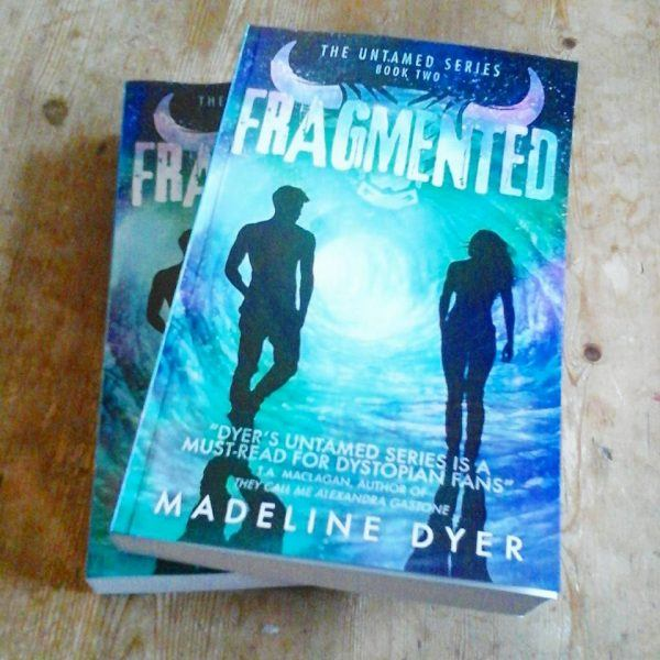 Fragmented Book Madeline Dyer