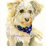 pet portrait custom dog drawing