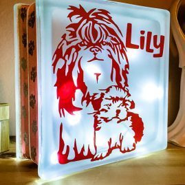 Cute Shih Tzu and her Puppy Nightlight 1