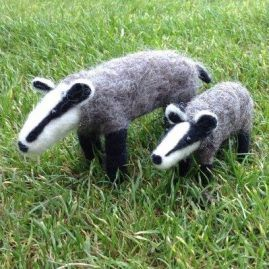 Badgers2